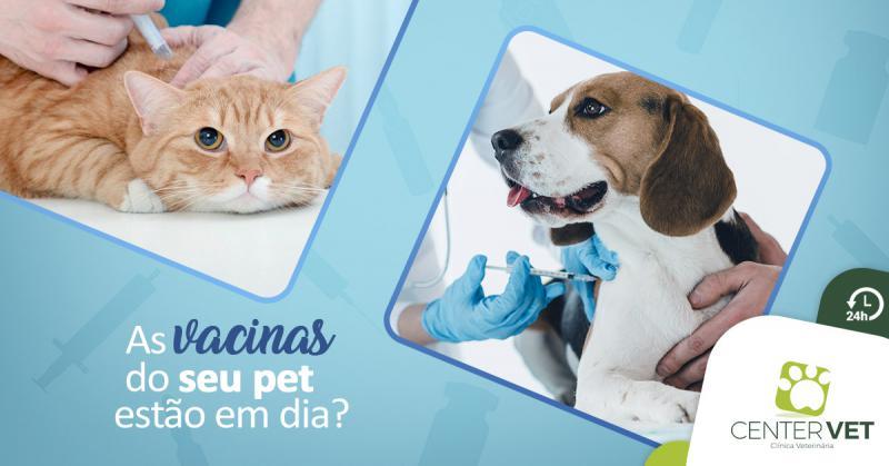 As vacinas do seu pet estão em dia?