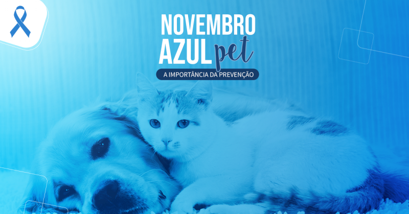 Novembro Azul Pet: A importância da prevenção