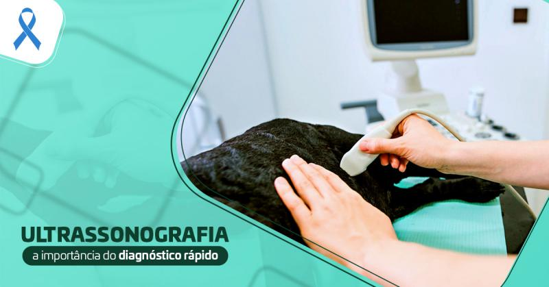 Ultrassonografia: A importância do diagnóstico rápido.