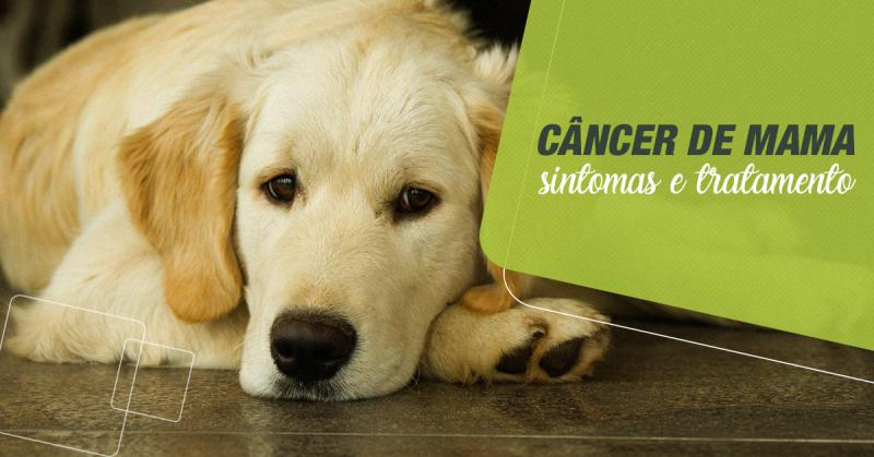 Câncer de Mama - Sintomas e Tratamentos