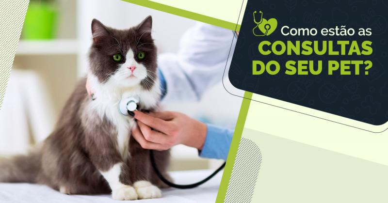 Como estão as consultas do seu pet?
