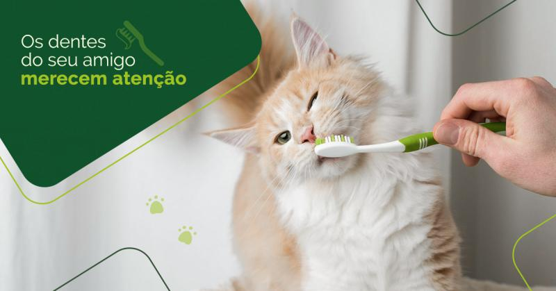 Mantenha seu pet com os dentes limpos e fortes.