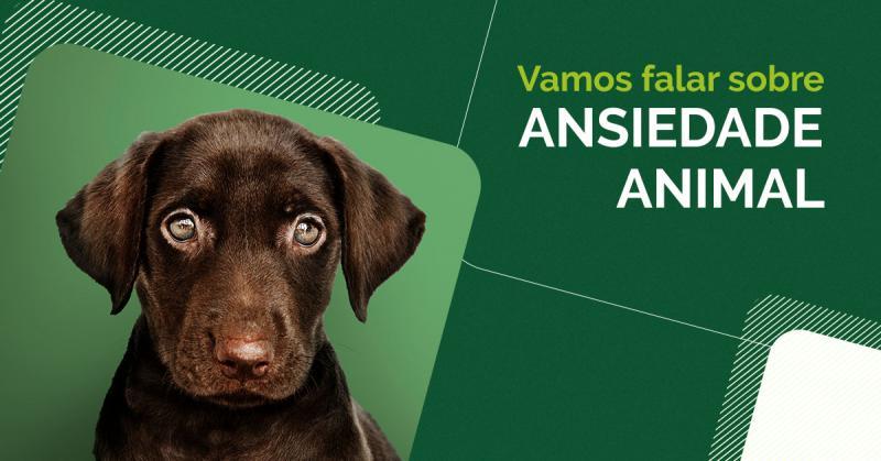 A ansiedade é um transtorno sério que requer muito cuidado e atenção.