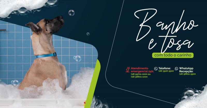 Banho é bom, banho é bom  Banho é muito bom