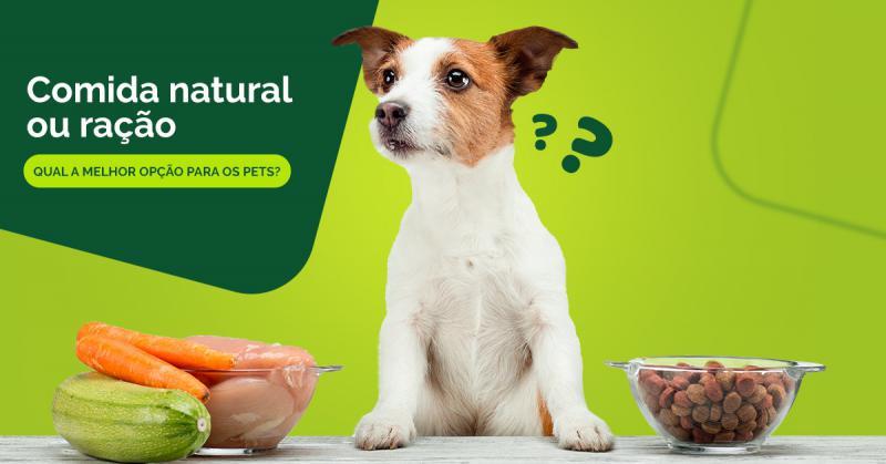 Quando se trata da alimentação dos pets, surge a dúvida do que é melhor para eles: ração ou comida natural?