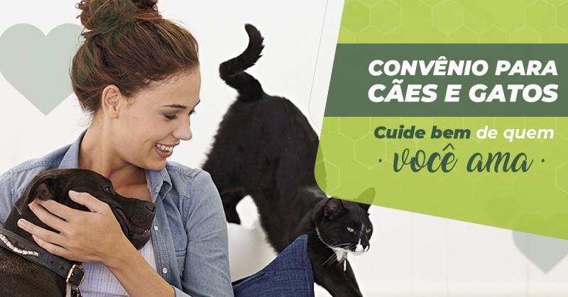 Convênio para cães e gatos